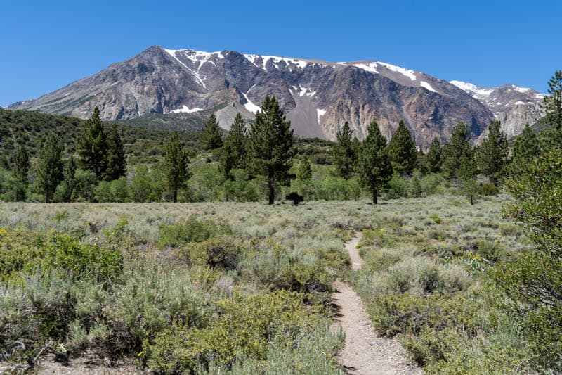 Trail to Parker Lake in the summer