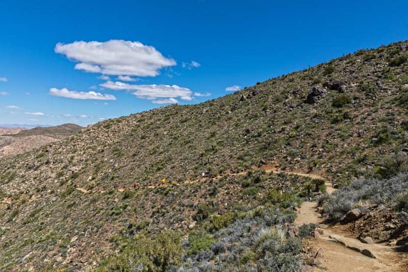 Hiking Ryan Mountain in Joshua Tree, California