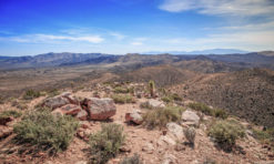Hike the Ryan Mountain Trail in Joshua Tree National Park, California!
