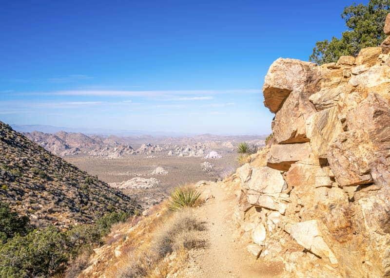 Ryan Mountain Hike in Joshua Tree California