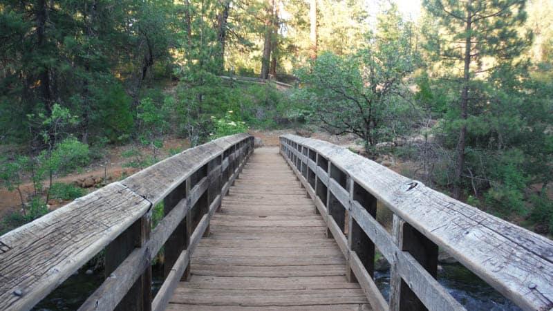Trail in McArthur-Burney Falls Memorial SP in California