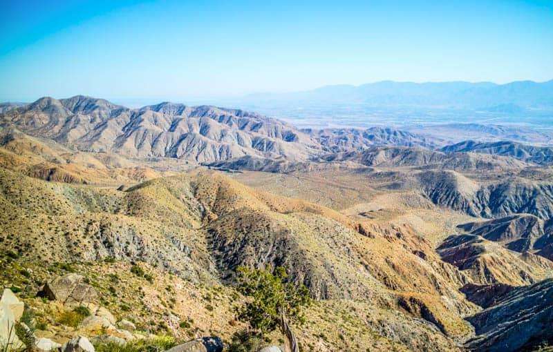 View from the Ryan Mountain Hiking Trail in Joshua Tree NP California