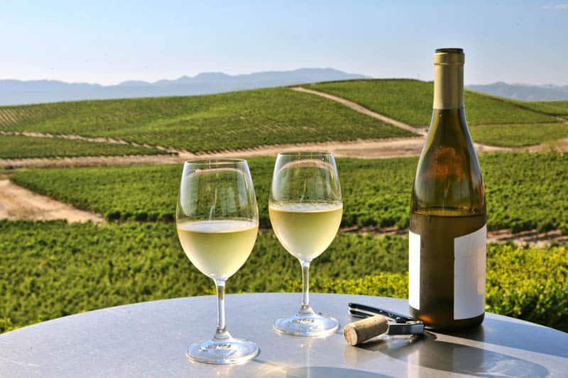 Wine tasting in the Napa Valley of California