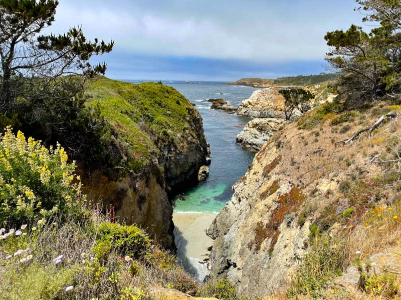 A view along Bird Island Trail in Point Lobos State Reserve, California