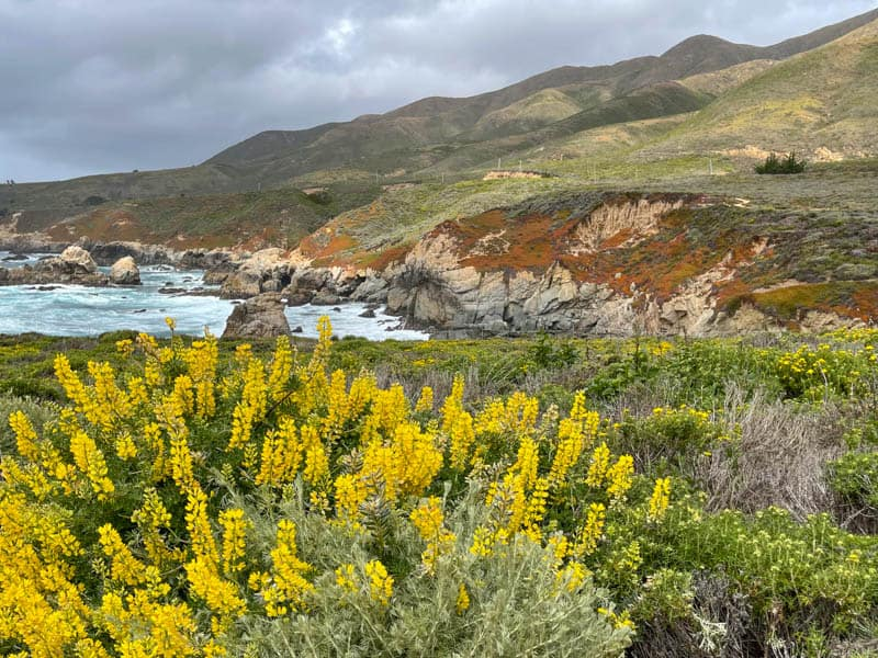 View from the Garrapata State Park Bluff Trail in Big Sur, California