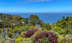 Carmel Highlands, California (Things to Do + Travel Guide!)