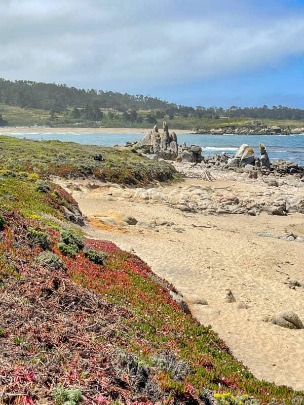Boulders and driftwood on Carmel Meadows Beach in Carmel, California