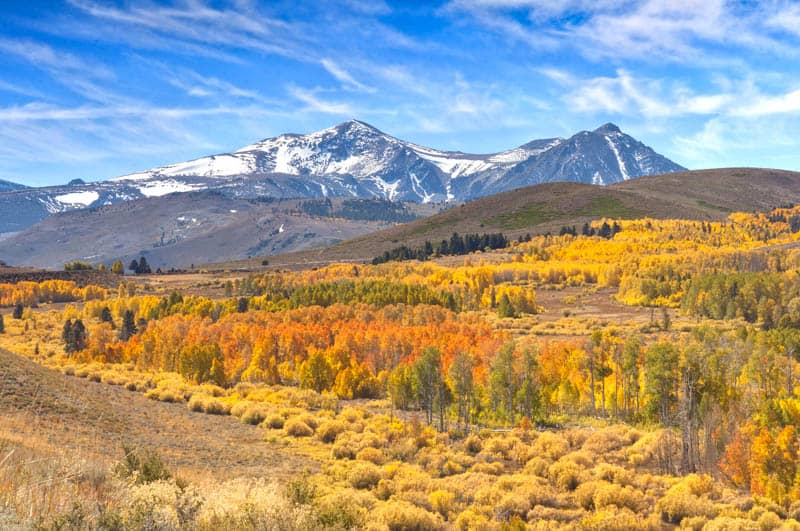 View from Conway Summit along Highway 395 in the fall