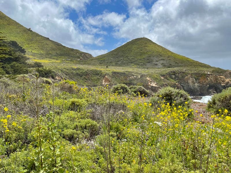 The Garrapata State Park Bluff Trail in California offers lots of beautiful views!