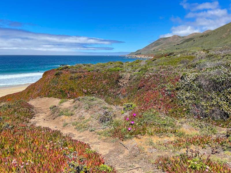 Beautiful Garrapata State Beach in Big Sur California