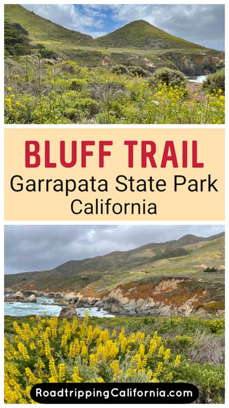 Discover what to expect on the Bluff Trail in Garrapata State Park in Big Sur, California, from ocean views to waterfalls an d wildflowers. Plus tips for doing the scenic hike!