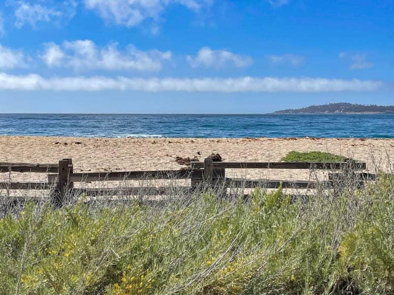 Monastery Beach in  Carmel, California