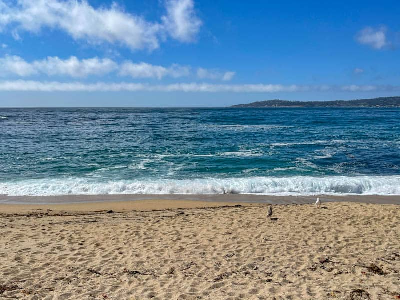Looking out at the Pacific Ocean from  Monastery Beach in Carmel, California