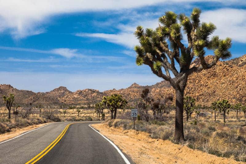 Driving Park Boulevard through the Mojave Desert in Joshua Tree National Park, California