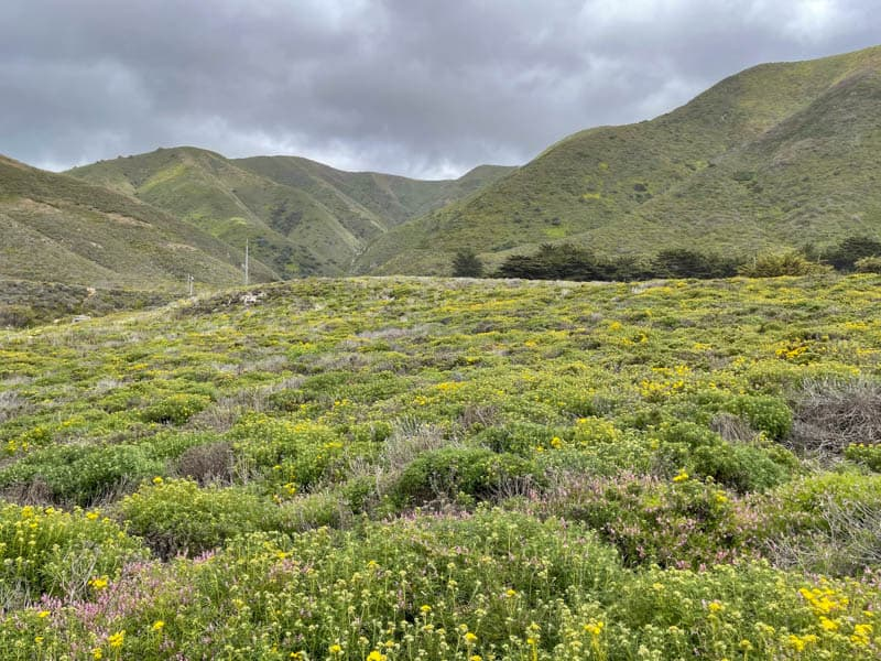 A view of the Santa Lucia Mountains from the Garrapata State Park Bluff Trail in Big Sur