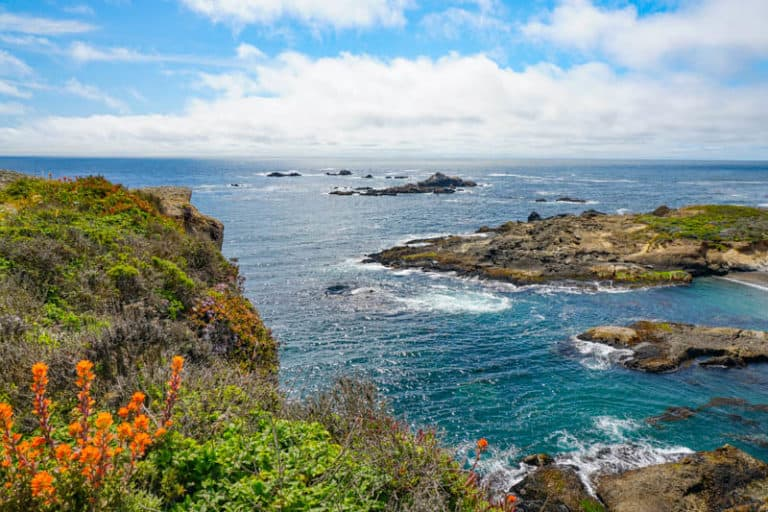 Sea Lion Point Trail in Point Lobos State Reserve, Carmel, California