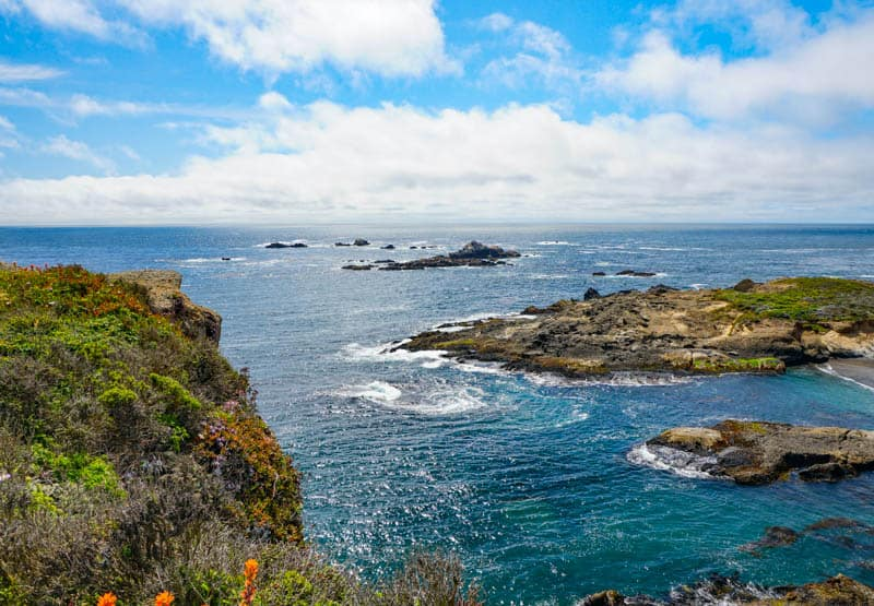 A view of the Sea Lion rocks from the viewpoint on the trail in Point Lobos California