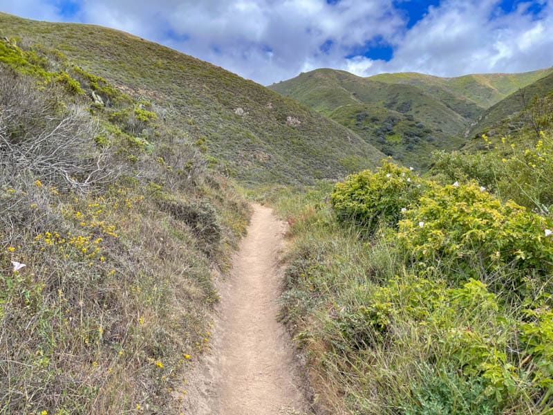 Soberanes Canyon Trail in Garrapata State Park is one of the best hikes in Big Sur, California
