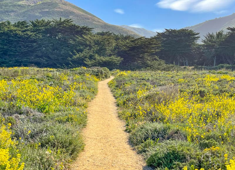 Returning to the trailhead at the Soberanes Point Trail in Garrapata State Park, Big Sur, California