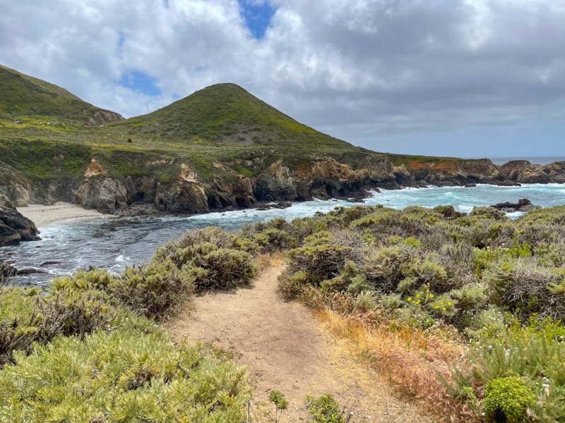 A little spur trail from the Garrapata Bluff Trail leads closer to the cliff edge