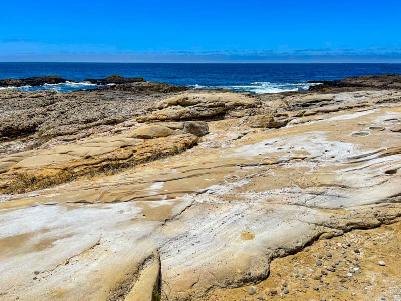Rock formations along the South Shore Trail in Point Lobos State Natural Reserve California