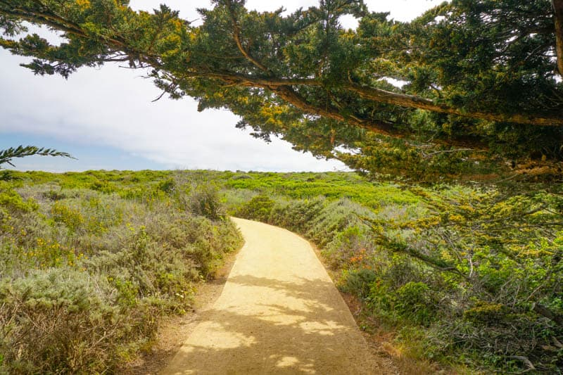 Start of the Sea Lion Point Trail at Point Lobos in Carmel, CA