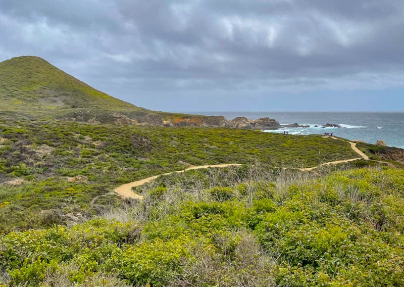 A look back at the Garrapata State Park Bluff Trail in California
