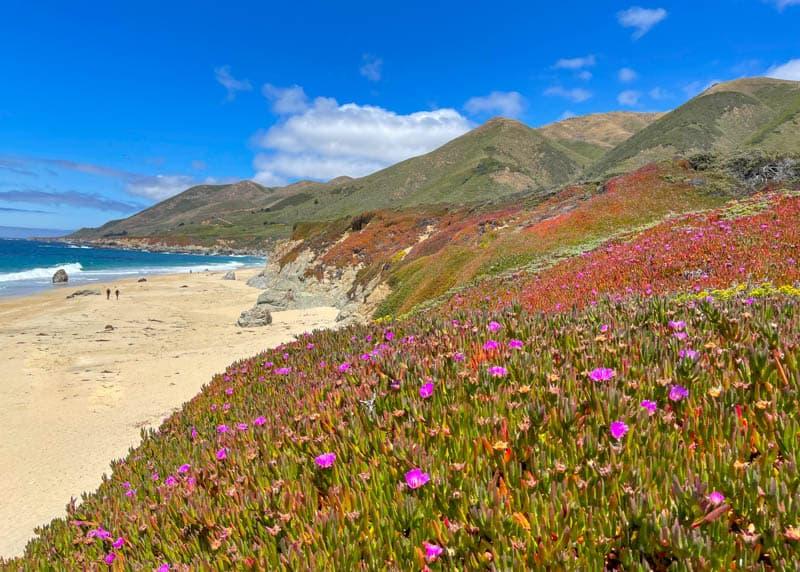 A view of Garrapata State Beach in Big Sur, California