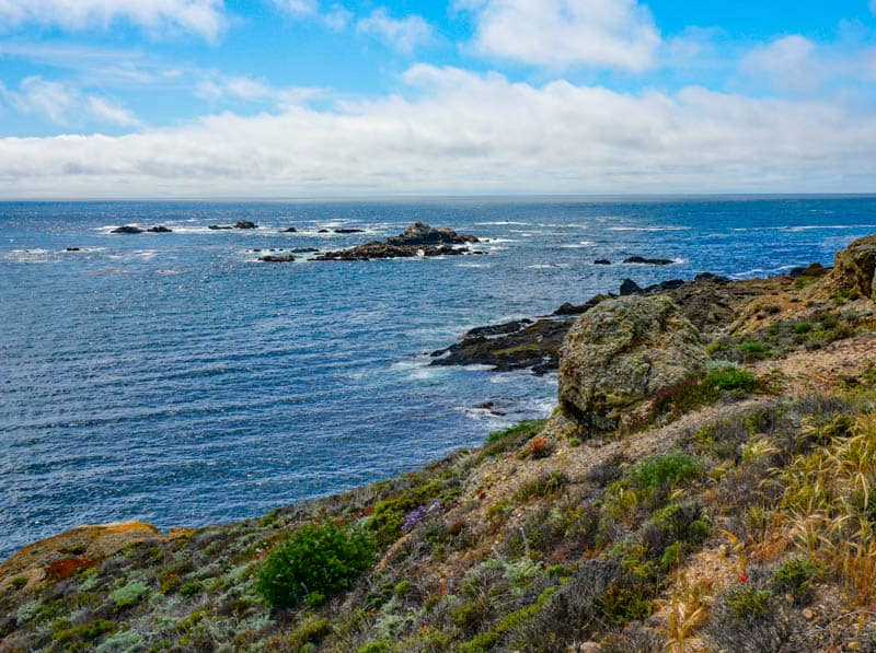Stunning water views from the Sea Lion Point Trail in Point Lobos in the spring