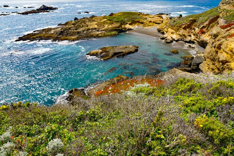 Water views from the Sea Lion Point Trail in Point Lobos State Reserve California