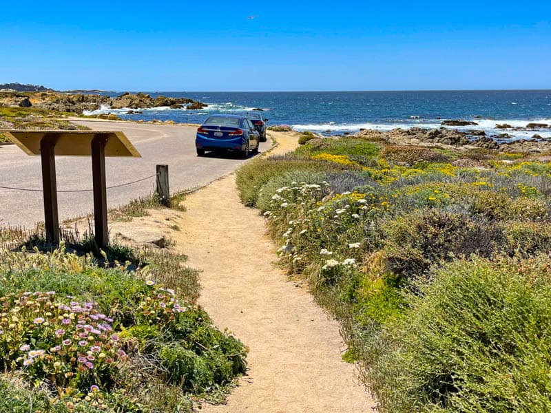 Driving 17-Mile Drive in the spring