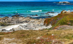 17-Mile Drive: A Scenic Road Trip Through Pebble Beach, California