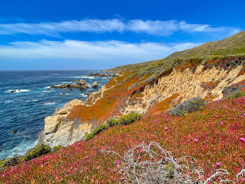 The colorful cliffs of Garrapata seen from the Bluff Trail