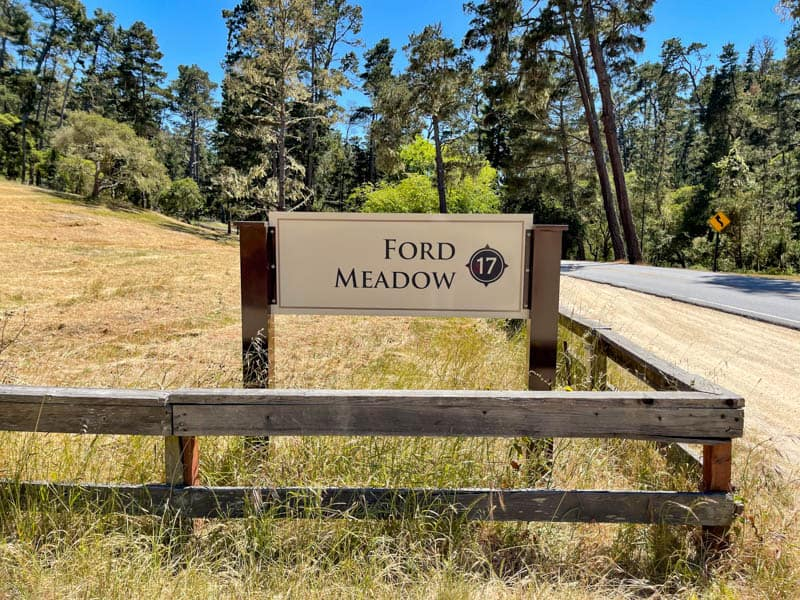 Ford Meadow along the 17-Mile Drive in California
