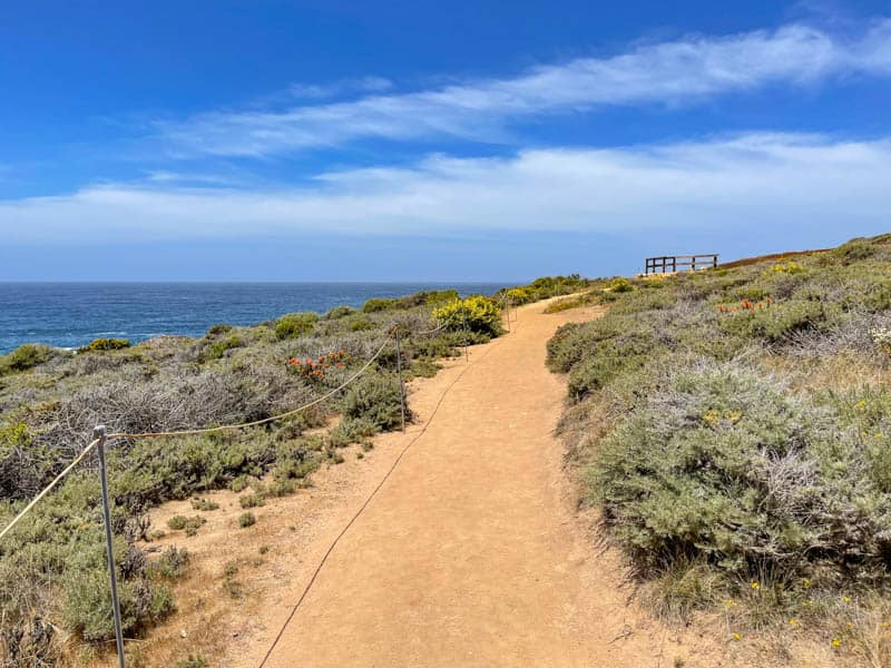 Bluff Trail going north from Gate 7 at Garrapata State Park in Big Sur, California