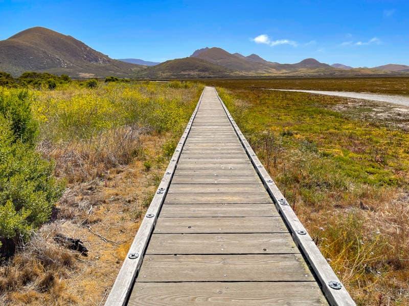 Marina Peninsula Loop Trail Morro Bay State Park California