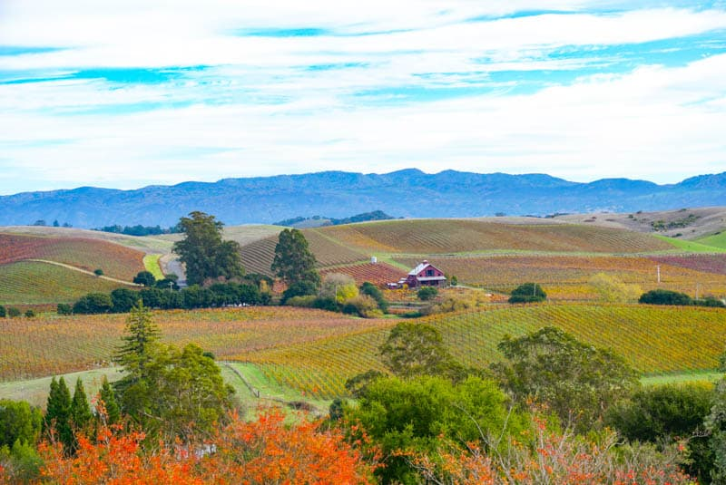Napa Valley in California -- Where to Stay on a Getaway
