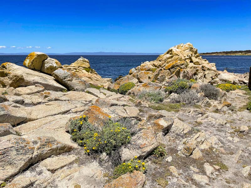 Rocky landscape at Point Joe on the 17-Mile Drive in Pebble Beach, CA