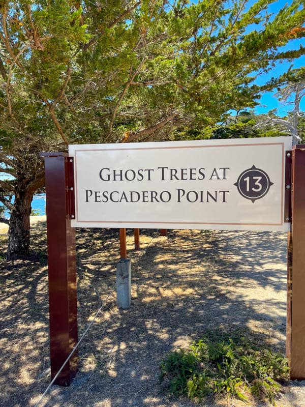 Each stop on the 17-Mile Drive is marked by signs