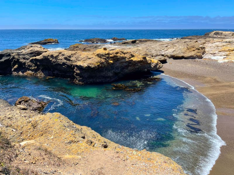 South Shore Trail in Point Lobos State Natural Reserve near Carmel California
