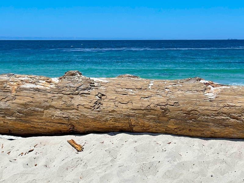 Spanish Bay Beach in Pebble Beach California