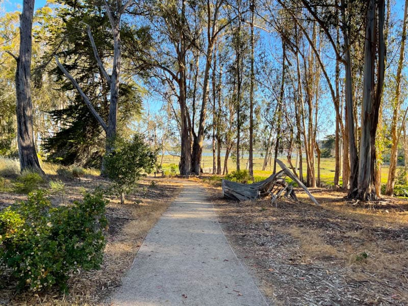 Strolling Sweet Springs Natural Preserve in Los Osos California