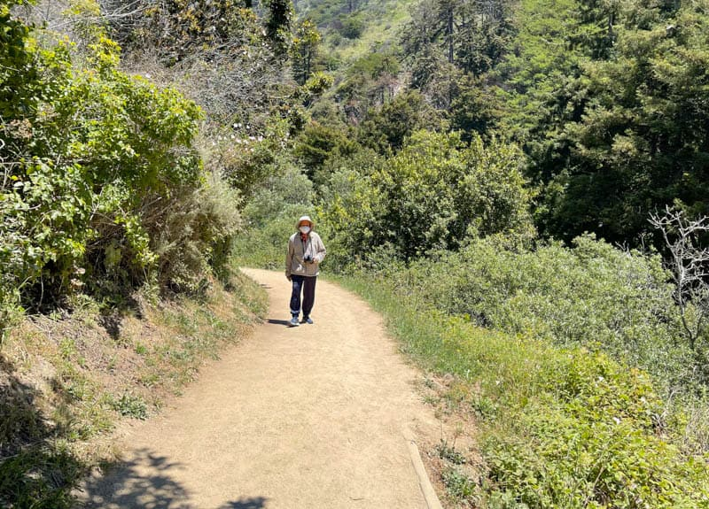 Walking the wide McWay Falls Trail at Big Sur California