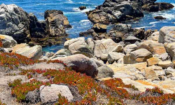 The 17-Mile Drive through Pebble Beach features stunning scenery
