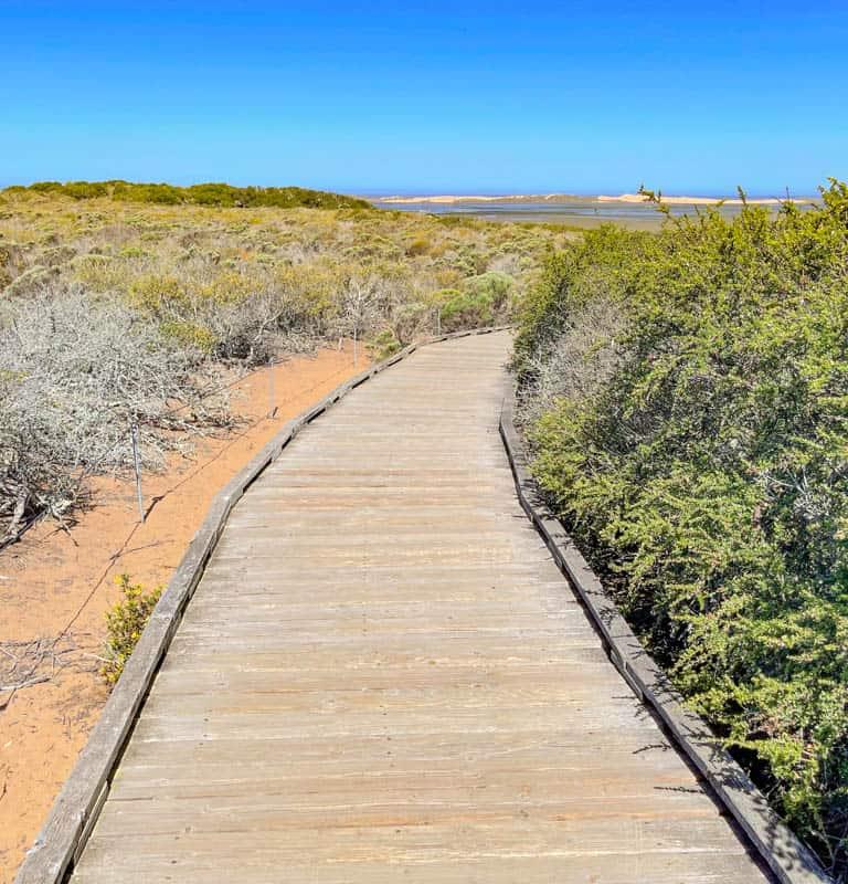 Walking the boardwalk trail at the Elfin Forest near Morro Bay, California