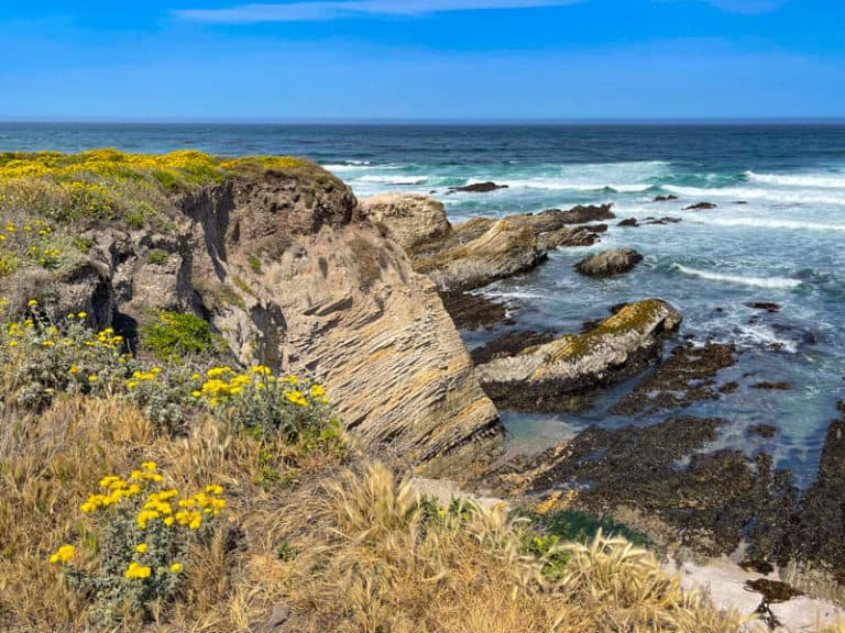 Exploring Montana de Oro State Park is one of the best things to do in Los Osos California