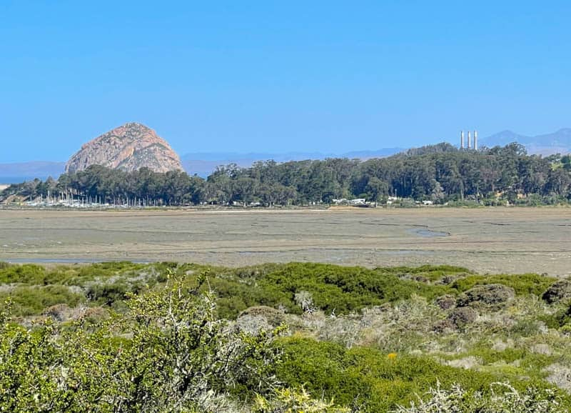 A view of Morro Rock and Morro B ay from the Elfin Forest Trail in Los Osos California