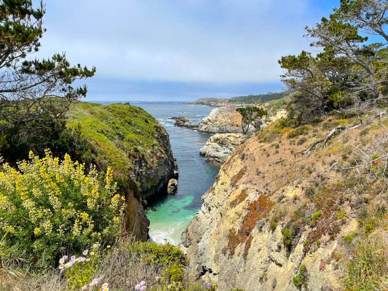 A view from Bird Island Trail in Point Lobos California