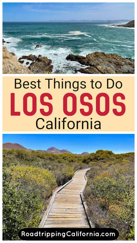 Discover the best things to do in Los Osos-Baywood, California, from walking the boardwalk at the Elfin Forest to exploring Montana de Oro State Park!