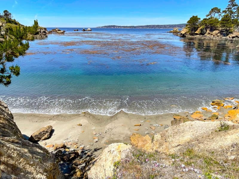 A view from Granite Point Trail in Point Lobos California